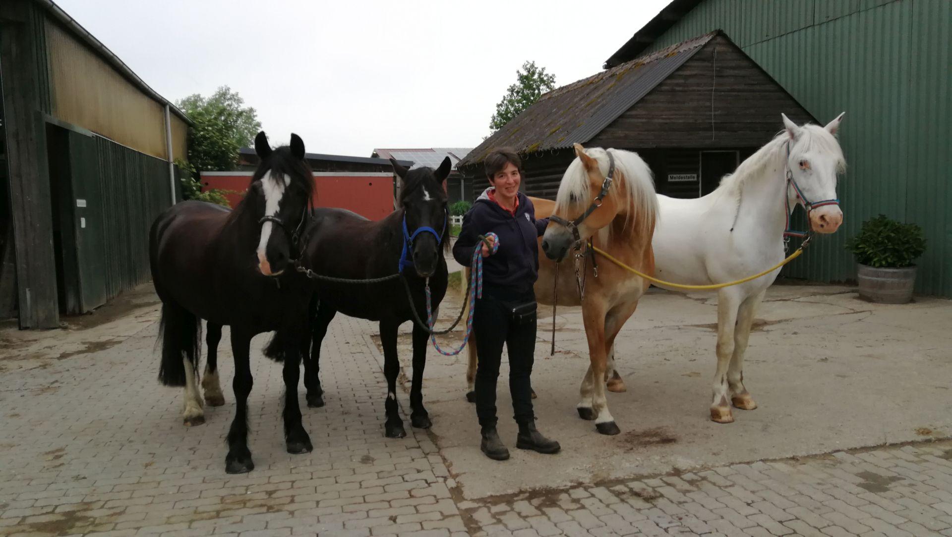 Anja Britt & Ihre Pferde